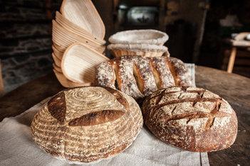 Sourdough Bread Selection