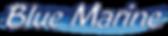 logo-bluemarine-708x154.png