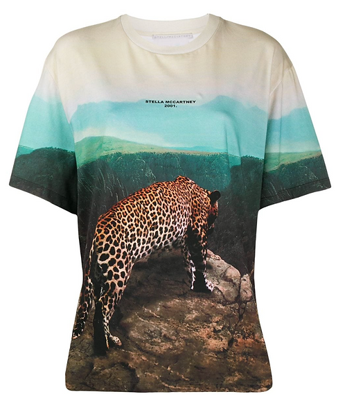 Multicolour Moutain & Cheetah Photographic Print T-Shirt