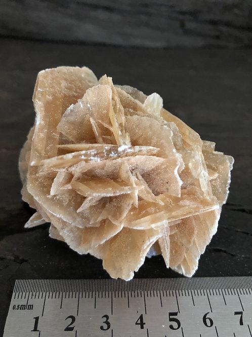 Ørkenrose - Selenit ca. 160 gr.