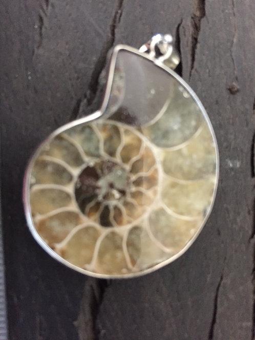 Ammonit 9 gr. m. øsken til kæde