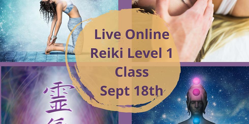 ONLINE USUI REIKI LEVEL 1 CLASSES - Saturday September 18th, 2021