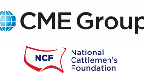 CME Group Beef Industry Scholarship