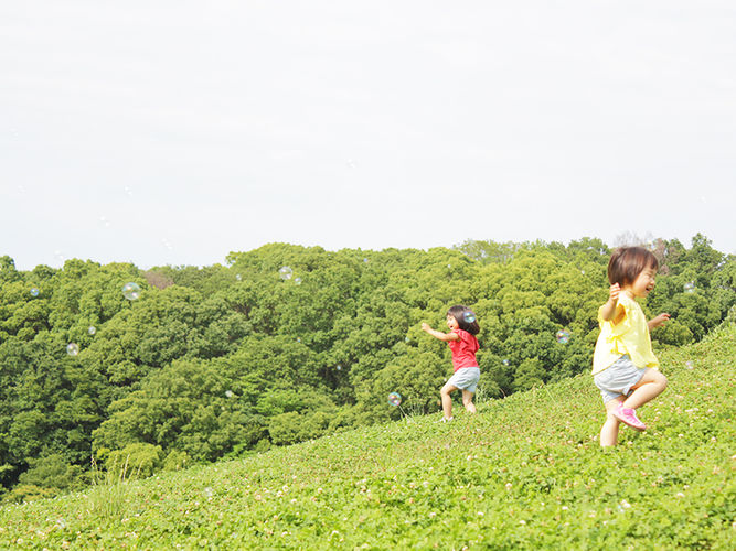 greenarium_image_118.jpg