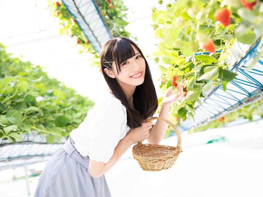 picnic_image_11.jpg