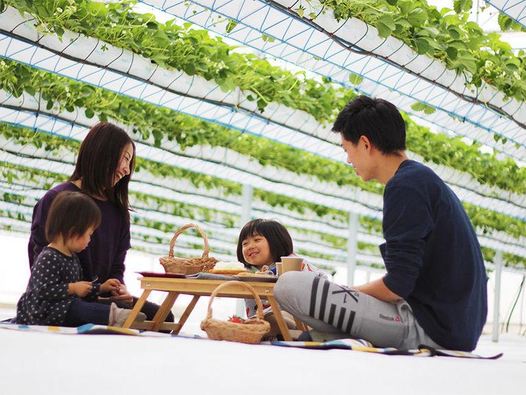 picnic_image_04.jpg
