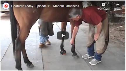 RFDTV Episode #11 - Modern Lameness