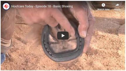 RFDTV Episode #18 - Basic Shoeing