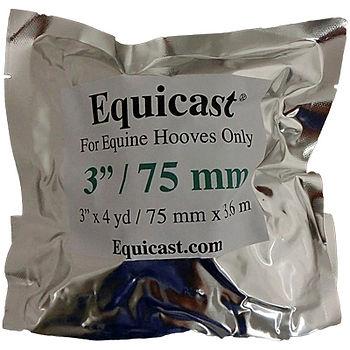 Equicast-package.jpg