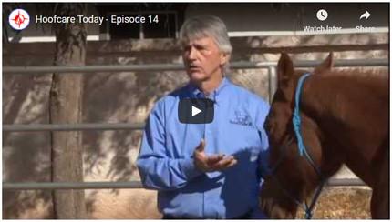 RFDTV Episode #14 - Horsemanship