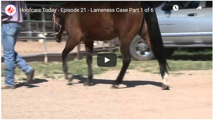 RFDTV Episode #21 - Lameness Case - Part 1