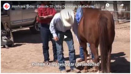 RFDTV Episode #20 - Misbehaving