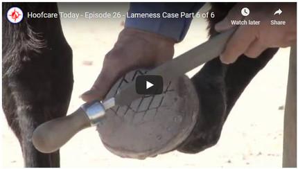 RFDTV Episode #26 - Lameness Case - Part 6
