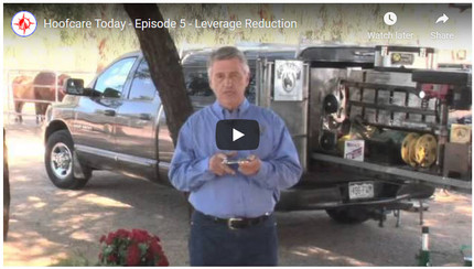 RFDTV Episode #5 - Leverage Reduction