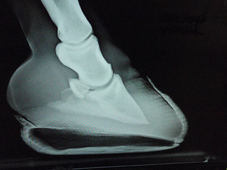 Using Radiographs to Check Alignment
