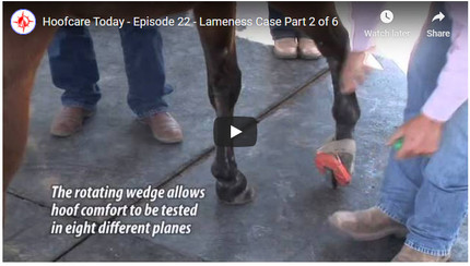 RFDTV Episode #22 - Lameness Case - Part 2