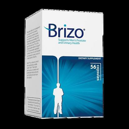 Main Brizo Old USA.png