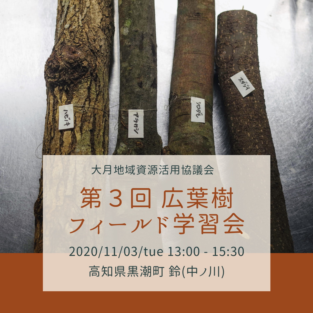 第3回 広葉樹フィールド学習会
