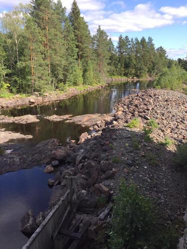 Natuur nabij huis in Zweden