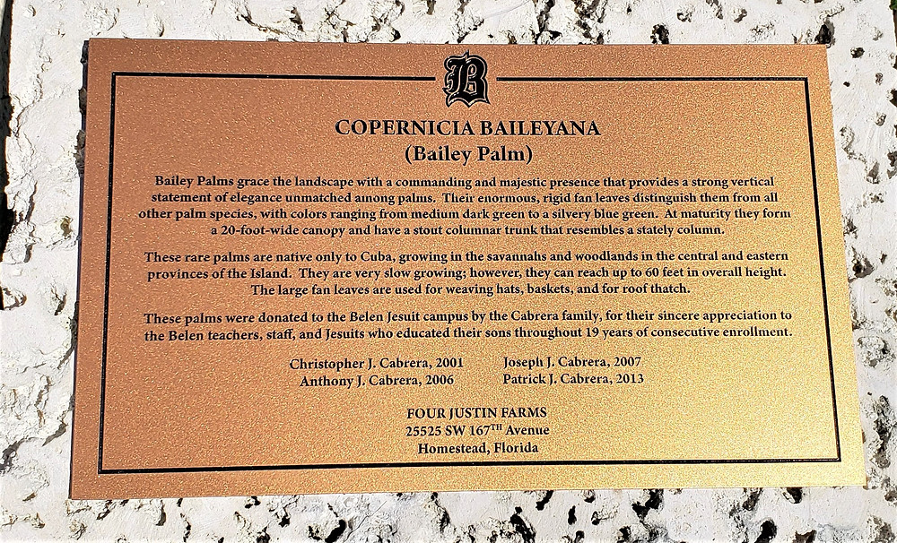 A plaque commemorates the Cabrera's generous gift to Belen.