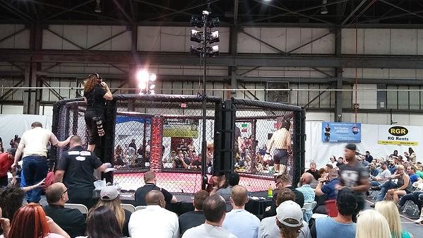 MMA octagon lighting using crank stands and Rasha LED lights.