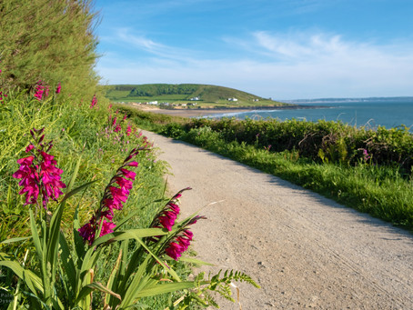 Fantastic News for Croyde and the AONB!