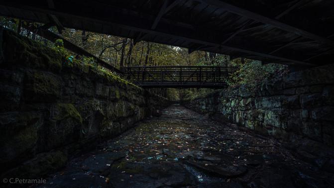 wi bridge v2.jpg