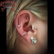 Fresh Conch _ Healed Tragus and Rook (He