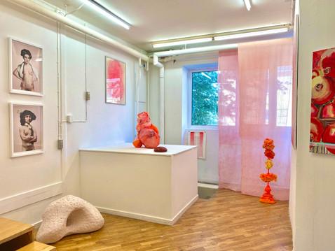 FARVEGANG red room
