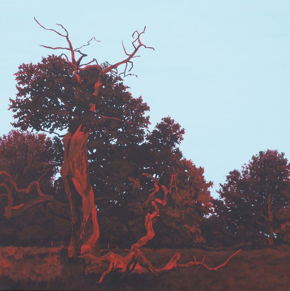 Træet, nordøst