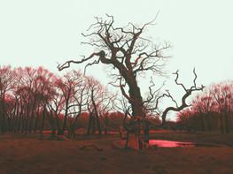 Træet, syd