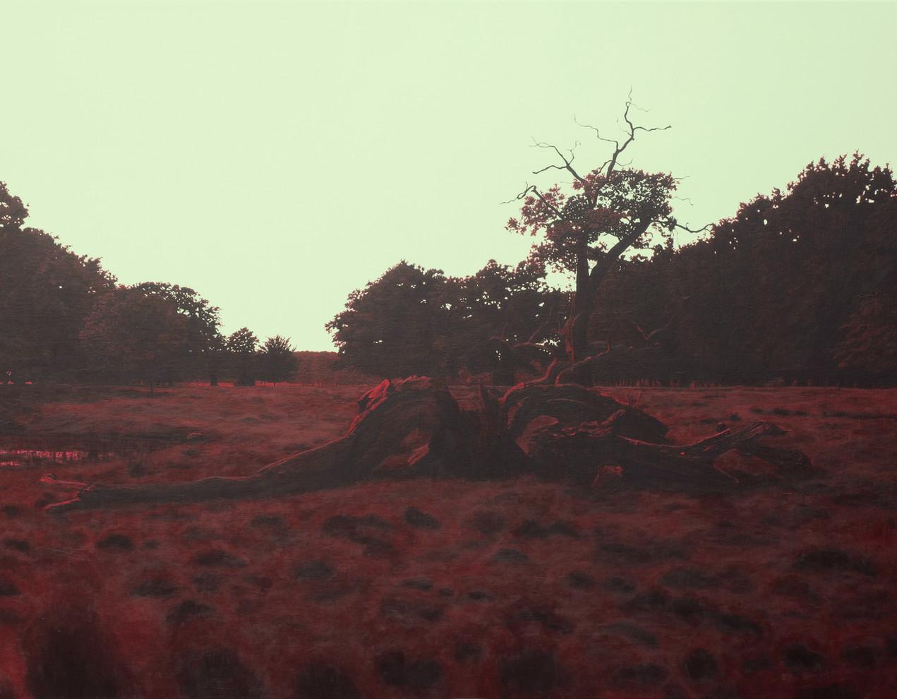 Træet, nord-nordvest