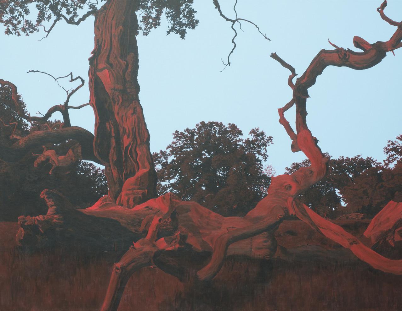 Træet, nord-nordøst