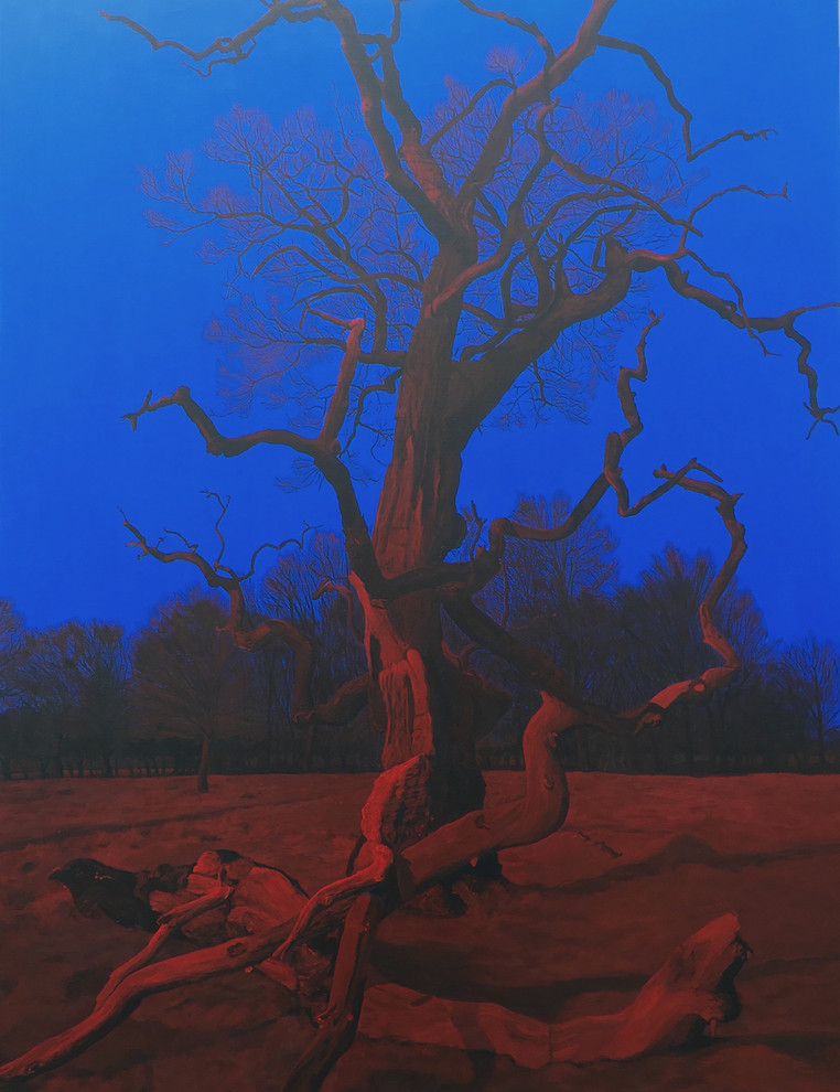 Træet, nord