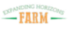 EHF-Logo (1)_edited.png