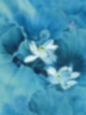 Blue Kalbar