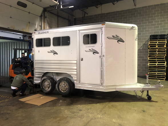 project cargo horse trailer.jpg