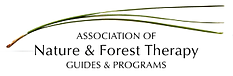 ANFT_LOGO.png