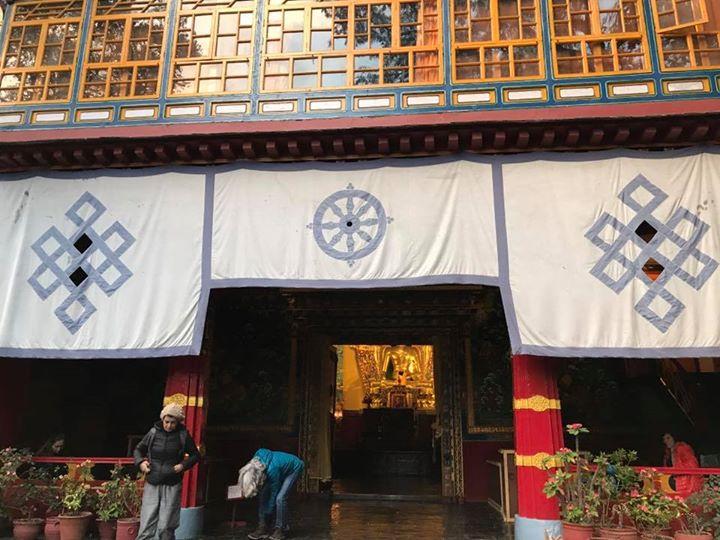 Dharamsala 💗💗💗🦋🦋🦋