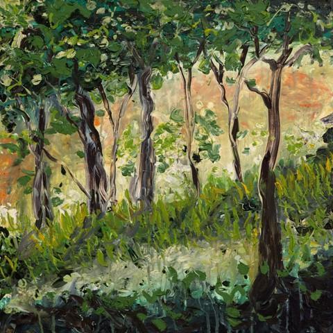 Woods by Gerry Tuten
