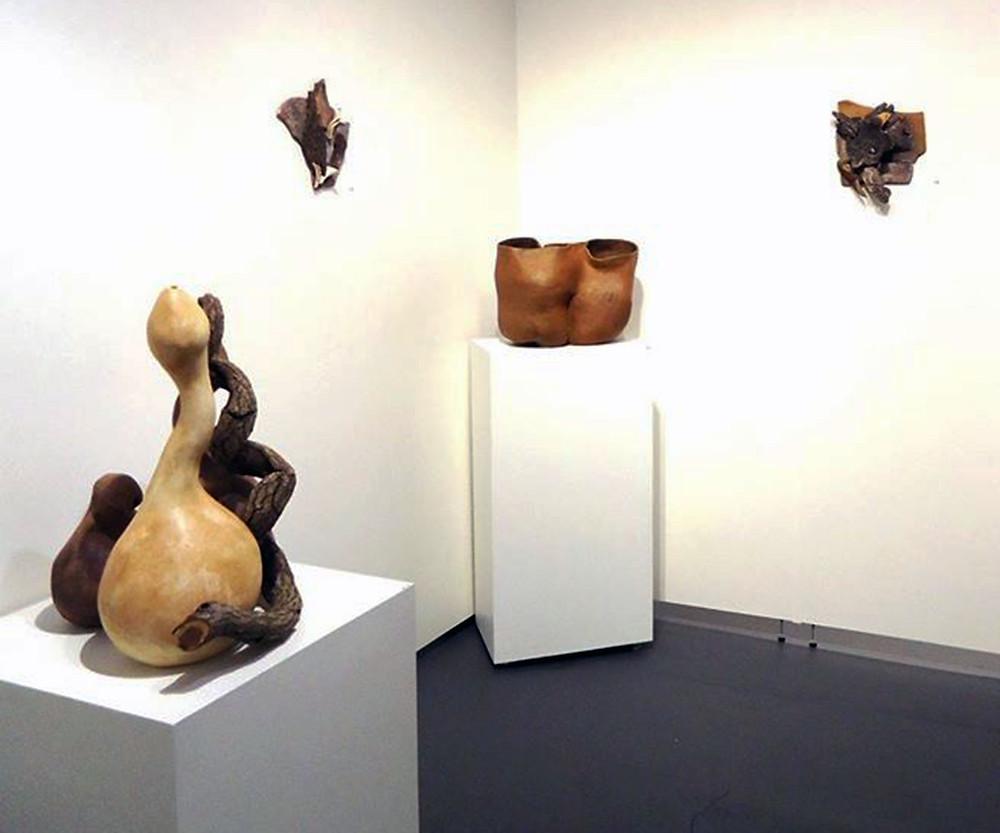 Installation view. Joanne Karpowitz, ceramic
