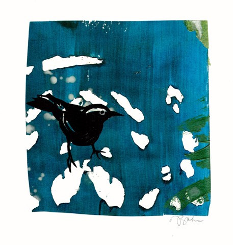 Julie Zahn. A Starling In Shadow.