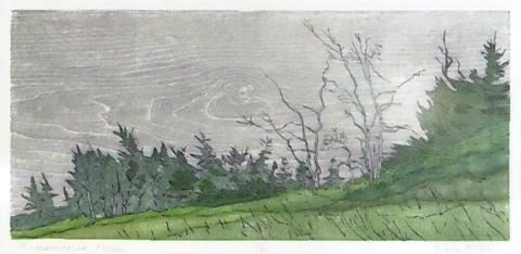 Dan Miller.  Remembered Trees.