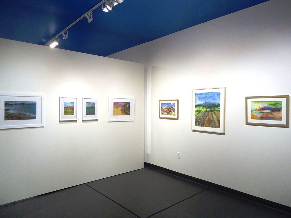 Installation view. Nancy Halbert, pastel on paper