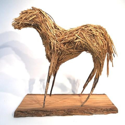 The Foal by Alysa Bennett.