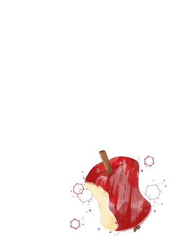 Kap1-2-Apfel-halbseitig.jpg