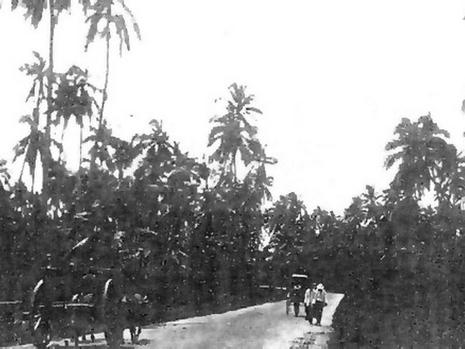 Tanjung Katong Road in the early part