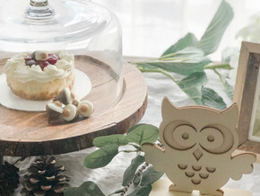 Woodland Theme Baby Shower: Decor Tips and Tricks