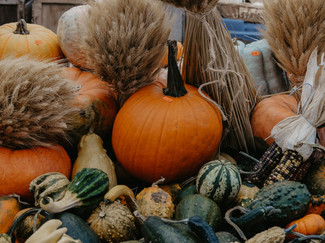 display-of-autumn-colors-with-pumpkins-a