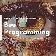 Bee Programming.jpg